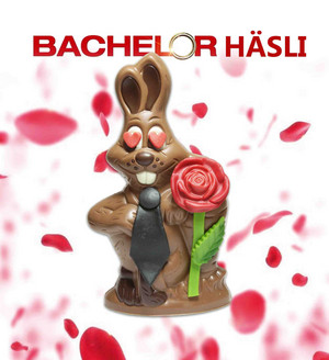 Happy Bachelor