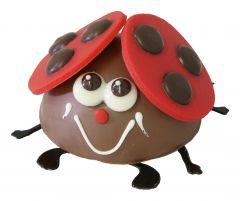 Glückskäfer Schokolade rund gross