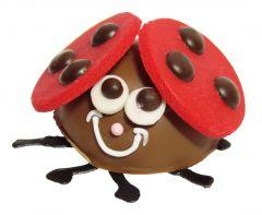 Glückskäfer Schokolade rund klein