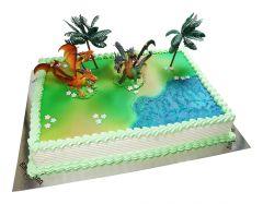 Children's Birthday Cake Dragon Mystery