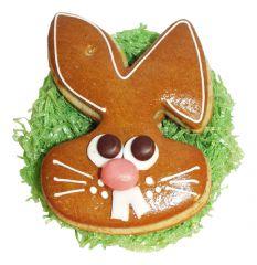 Osterhase Bunny