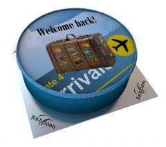 Shipping Cake Suitcase